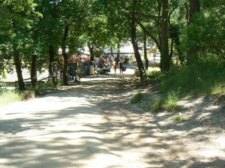 Avant de grimper la dune du Pilat