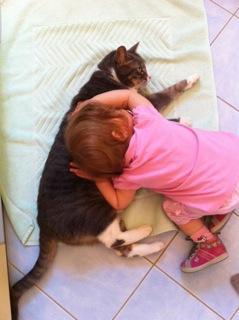 elle fait dodo sur son chat chaussette