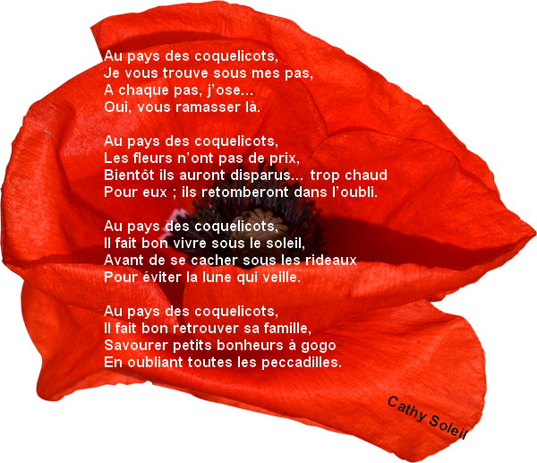 coquelicots.png