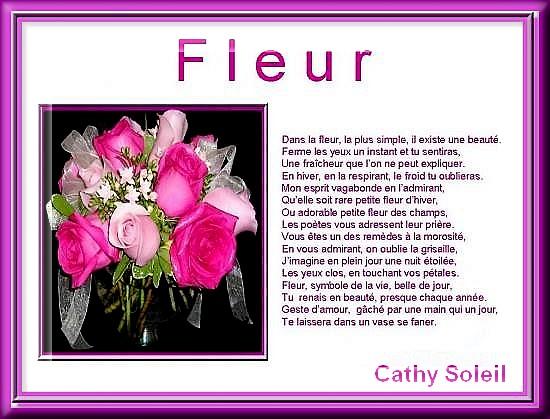 fleur-cat-so.jpg